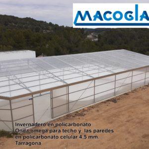 Invernaderos de policarbonato