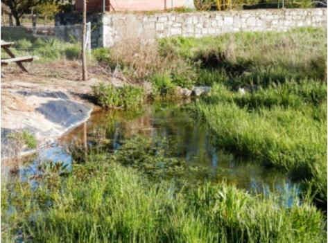 Lámina PVC para creación de estanques