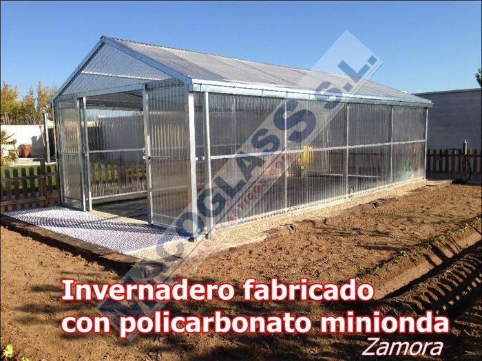Invernadero fabricado con policarbonato minionda (Zamora)