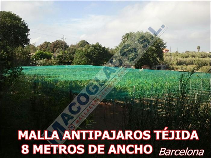 Malal antipájaros tejida 8 metros en Barcelona