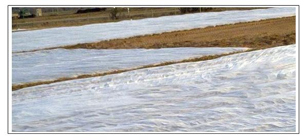Manta térmica cultivos