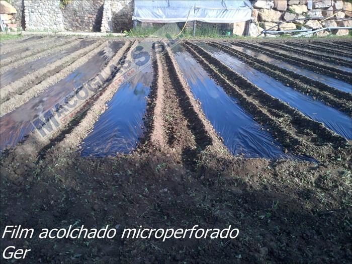 Plásticos acolchados microperforado