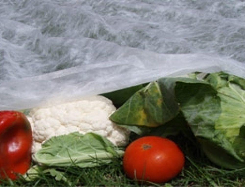 Ventajas y usos de la manta térmica (agricultura y ganadería)