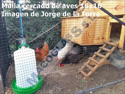 malla_cercados_aves_instalado
