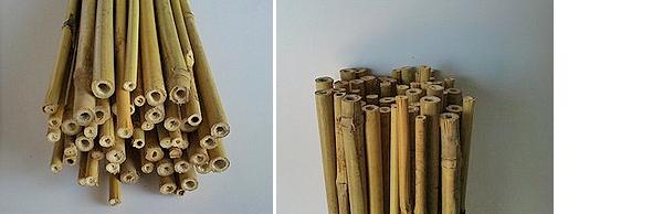 Tutor bambú 120 cm.