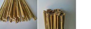 Tutor bambú 150 cm.