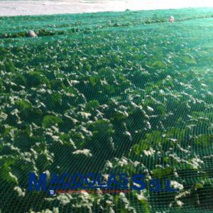 Malla antipajaros téjida 12 m de ancho. Cultivo de lechugas-Almería